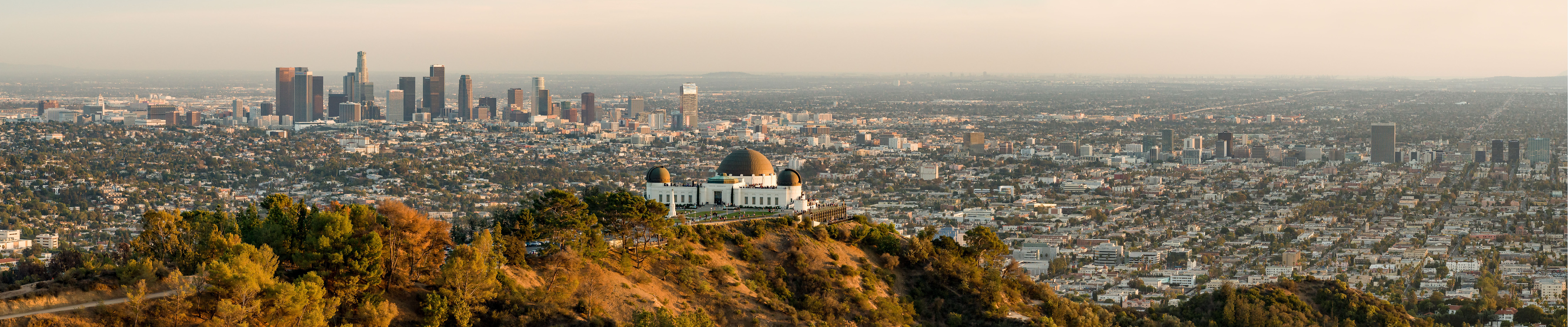View of downtown Los Angeles from the Hollywood hills
